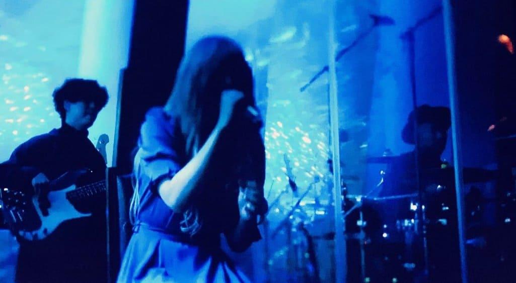 ヨルシカの配信ライブで見せたボーカルの素顔!